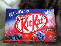 Kitkat01