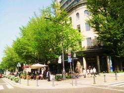 Nihon_ohdori