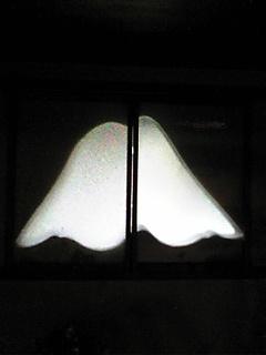 Image278